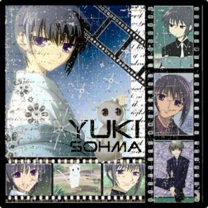 Yuki Collection